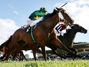 Longshot Anagold hangs on to win the Ipwich Cup